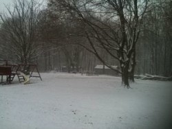Snow pic 4