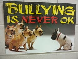 Bullying is never okay