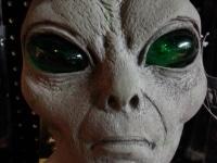 Grey Alien ET
